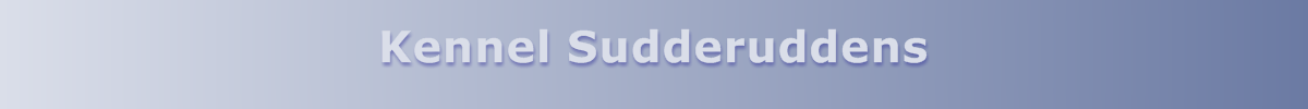 Kennel Sudderuddens
